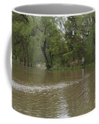 Flooded Park Coffee Mug