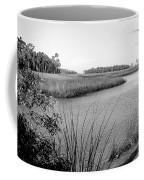 Florida Au Natural Bw Coffee Mug