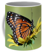 Florida Viceroy Coffee Mug