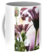 Flower Background Coffee Mug