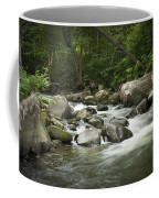 Flowing Stream In Vermont Coffee Mug