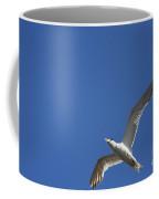 Flying Crested Tern Coffee Mug