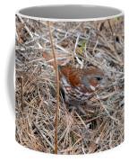 Fox Sparrow 2 Coffee Mug