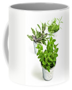 Fresh Herbs In Pots Coffee Mug