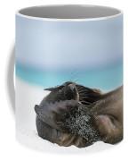 Galapagos Sea Lion Pup Covering Face Coffee Mug