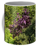 Garden Color At Woodward Park 8f Coffee Mug