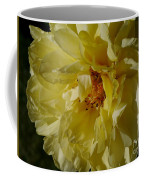 Garden Lady Coffee Mug