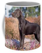 German Short-haired Pointer Puppy Coffee Mug