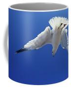 Goeland A Bec Cercle Larus Delawerensis Coffee Mug