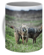 Golden Jackal Canis Aureus Coffee Mug