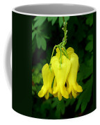 Golden Tears Vine Coffee Mug
