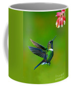 Gorgeted Sunangel Coffee Mug