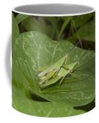 Grasshopper Mating On Grass Leaf Coffee Mug