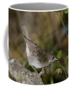 Gray-cheeked Thrush Coffee Mug