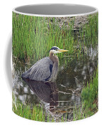 Great Blue Heron At Deboville Slough 2 Coffee Mug