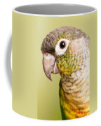 Green-cheeked Conure Pyrrhura Molinae Coffee Mug