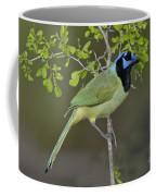Green Jay Coffee Mug