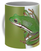 Green Treefrog Coffee Mug