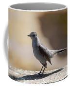 Grey Catbird Coffee Mug