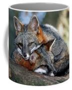 Grey Foxes Coffee Mug