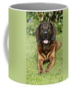 Hanover Hound Coffee Mug