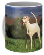 Harrier Dog Coffee Mug