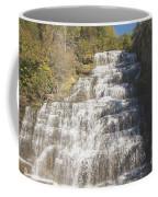 Hector Falls Coffee Mug
