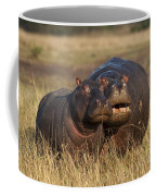 Hippo Cow And Calf Coffee Mug