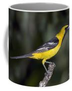 Hooded Oriole Male Coffee Mug