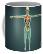 Human Body Showing Skeletal System Coffee Mug