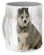 Husky Dog Puppy Coffee Mug