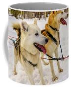 Husky Sled Dogs, Lapland, Finland Coffee Mug