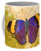 Indian Leaf Butterfly Coffee Mug