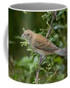 Indigo Bunting Hen Coffee Mug