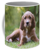 Irish Setter Puppy Coffee Mug
