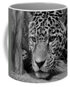 Jaguar In Black And White II Coffee Mug by Sandy Keeton