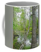 Jean Lafitte Swamp Coffee Mug