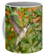 Juvenile Male Ruby-throated Hummingbird Coffee Mug
