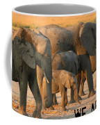 Kalahari Elephants Coffee Mug