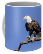 King Of The Sky Coffee Mug