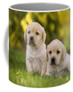 Labrador Puppies Coffee Mug