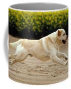 Labrador Retriever Dog Coffee Mug