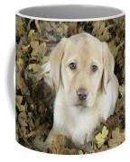 Labrador Retriever Puppy Coffee Mug