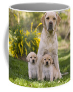 Labrador With Two Puppies Coffee Mug