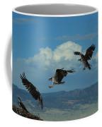 Landing Pattern Of The Osprey Coffee Mug