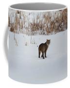 Last Look Coffee Mug