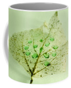 Leaf With Green Drops Coffee Mug