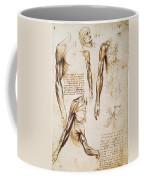 Leonardo: Anatomy, C1510 Coffee Mug