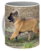 Leonberger Puppy Coffee Mug