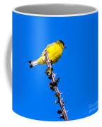 Lesser Goldfinch Coffee Mug
